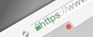 secure web development