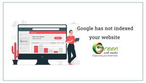Google-has-not-indexed-your-website