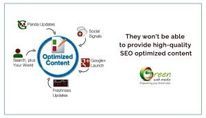 They-won--be-able-to-provide-high-quality-SEO-optimized-content